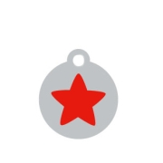Small Silver Disc Red Star Pet Tag