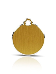 Small Gold Disc Pet Name ID Tag Hi Line