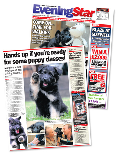 Happy Dog Days making the news!