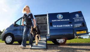 Suffolk dog training service